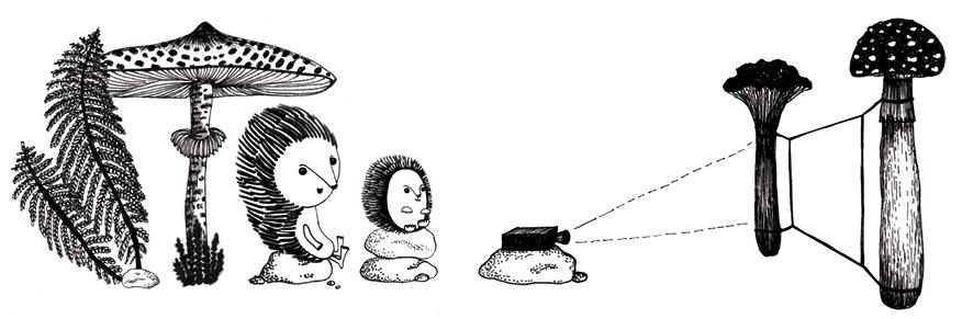 Kino Dzieci - Projekcja