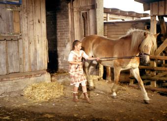 Noch ist Mississippi, das neue Pferd von Emma (Zoe Charlotte Mannhardt), stšrrisch. Doch Emma gibt nicht auf, sich mit ihm anzufreunden.Honorarfrei - nur fŸr diese Sendung bei Nennung ZDF und Wolfgang Jahnke