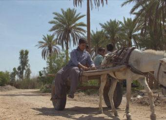 Irak_Jaffar 02_001